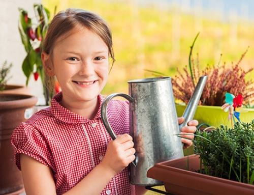 4 fertilizzanti naturali: il latte e non solo!