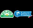 logo-torvis