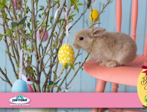 Come realizzare un originale Albero di Pasqua
