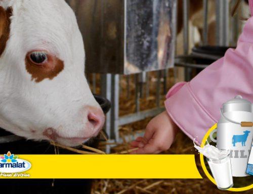 La filiera del latte: gioca e impara online